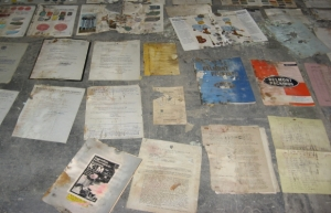 moldy Bain documents_1_1