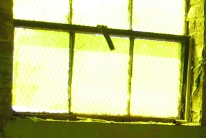 Yellow room window_1_1