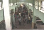 Bain main hall day 4_1_1